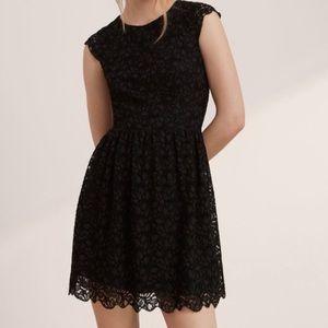Talula Belgravia Lace Scallop Hem Mini Dress